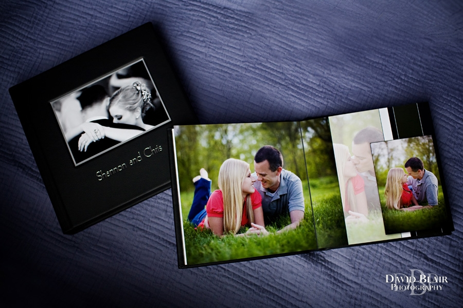 Chris and Shannon's Engagement Album | David Blair Photography ...